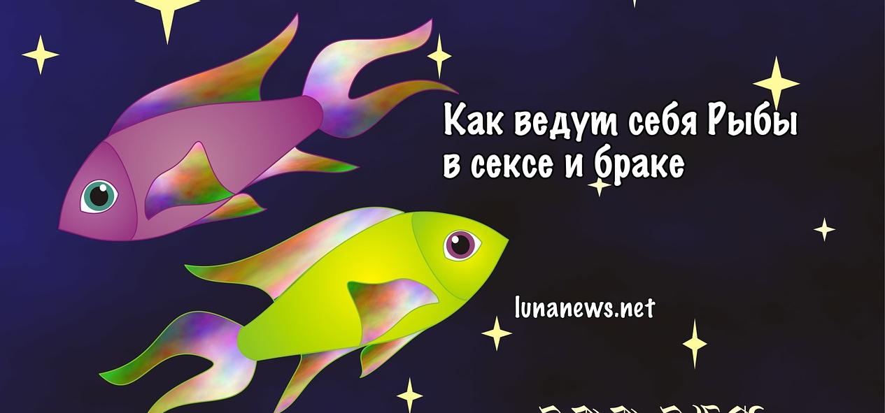 Сексуальные желания мужчины рыбы